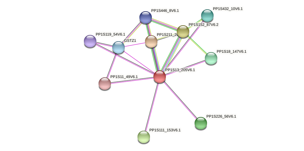PP1S13_205V6.1 protein (Physcomitrella patens) - STRING interaction network