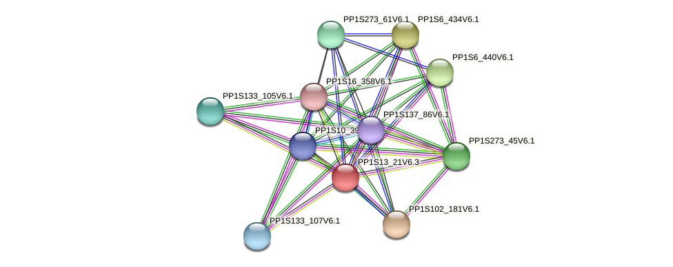 PP1S13_21V6.1 protein (Physcomitrella patens) - STRING interaction network