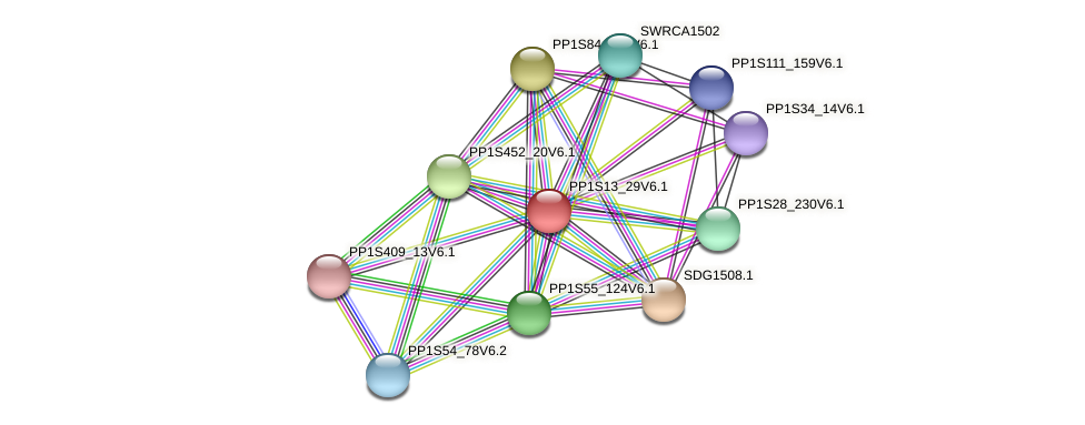 PP1S13_29V6.1 protein (Physcomitrella patens) - STRING interaction network