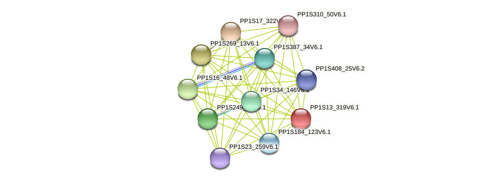 PP1S13_319V6.1 protein (Physcomitrella patens) - STRING interaction network