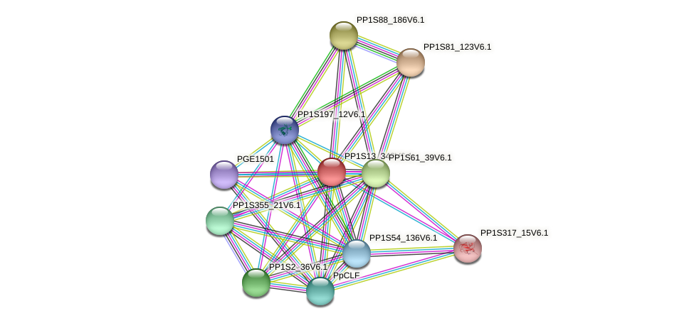 PP1S13_348V6.1 protein (Physcomitrella patens) - STRING interaction network