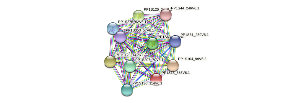 PP1S13_385V6.1 protein (Physcomitrella patens) - STRING interaction network