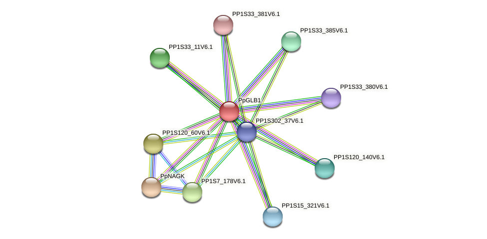 PP1S13_387V6.1 protein (Physcomitrella patens) - STRING interaction network