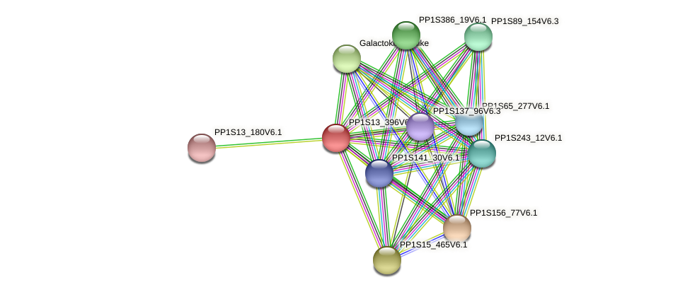 PP1S13_396V6.1 protein (Physcomitrella patens) - STRING interaction network