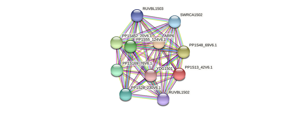 PP1S13_42V6.1 protein (Physcomitrella patens) - STRING interaction network