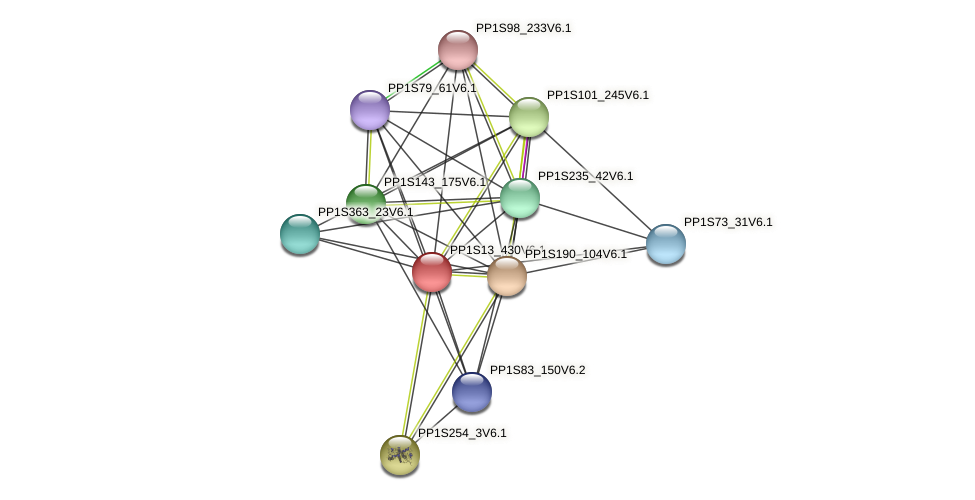 PP1S13_430V6.1 protein (Physcomitrella patens) - STRING interaction network