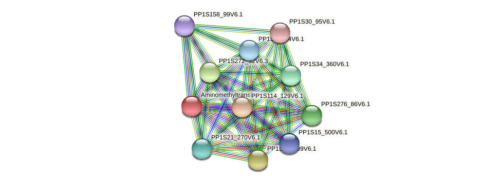 PP1S13_438V6.1 protein (Physcomitrella patens) - STRING interaction network