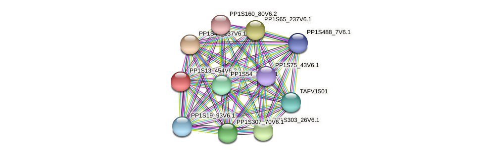 PP1S13_454V6.2 protein (Physcomitrella patens) - STRING interaction network