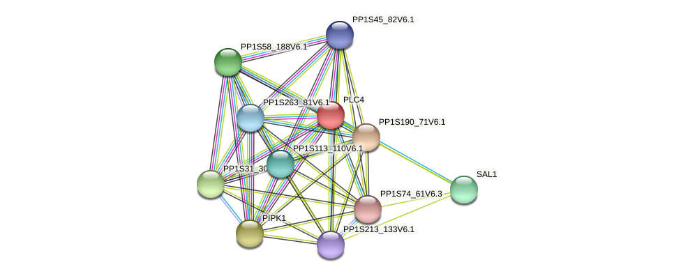 PLC4 protein (Physcomitrella patens) - STRING interaction network