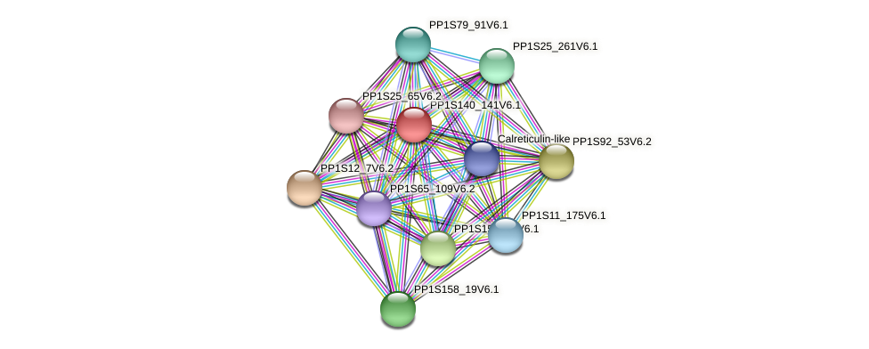 PP1S140_141V6.1 protein (Physcomitrella patens) - STRING interaction network