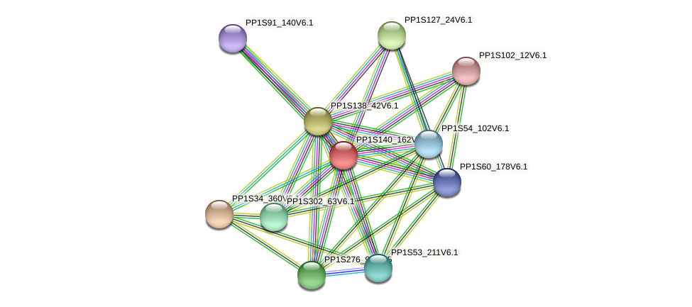 PP1S140_162V6.1 protein (Physcomitrella patens) - STRING interaction network