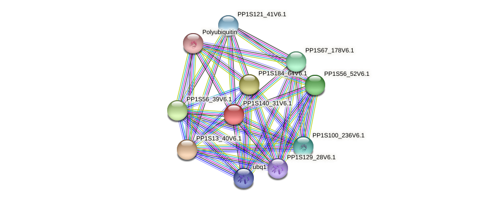 PP1S140_31V6.1 protein (Physcomitrella patens) - STRING interaction network