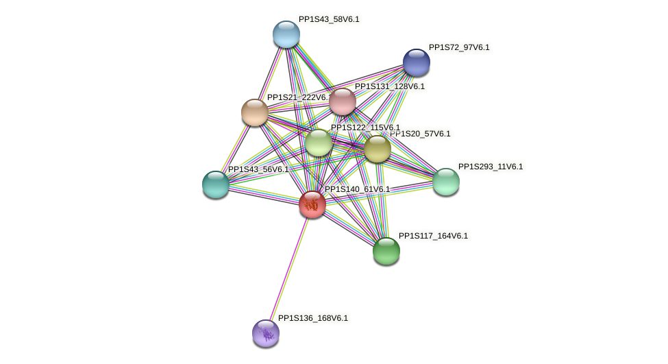 PP1S140_61V6.1 protein (Physcomitrella patens) - STRING interaction network