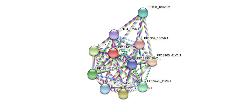 PP1S141_20V6.1 protein (Physcomitrella patens) - STRING interaction network