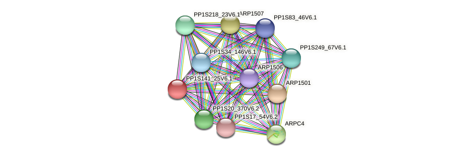 PP1S141_25V6.1 protein (Physcomitrella patens) - STRING interaction network