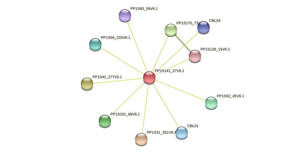 PP1S141_27V6.1 protein (Physcomitrella patens) - STRING interaction network