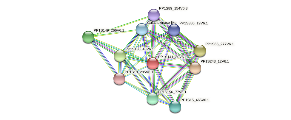 PP1S141_30V6.1 protein (Physcomitrella patens) - STRING interaction network