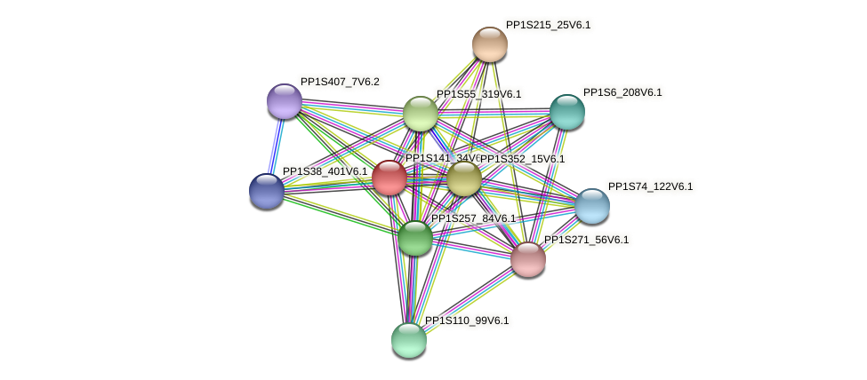 PP1S141_34V6.1 protein (Physcomitrella patens) - STRING interaction network