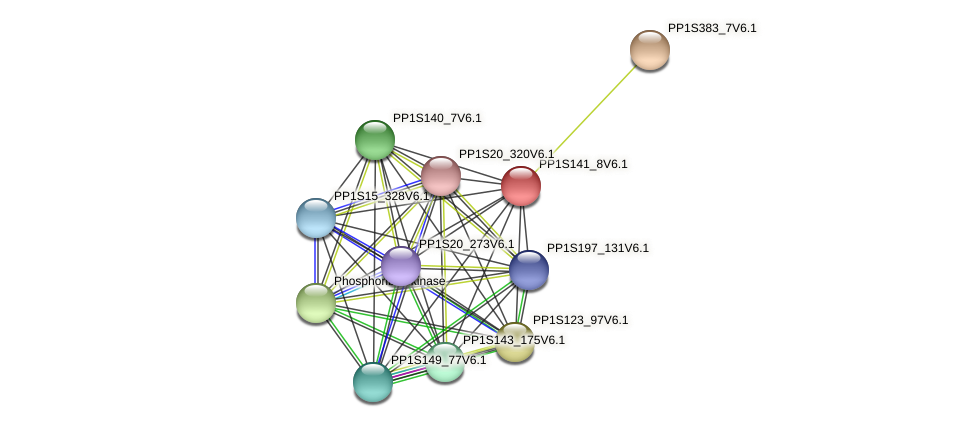 PP1S141_8V6.1 protein (Physcomitrella patens) - STRING interaction network