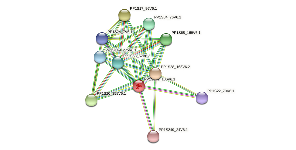 PP1S142_106V6.1 protein (Physcomitrella patens) - STRING interaction network