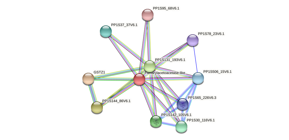 PP1S142_144V6.1 protein (Physcomitrella patens) - STRING interaction network