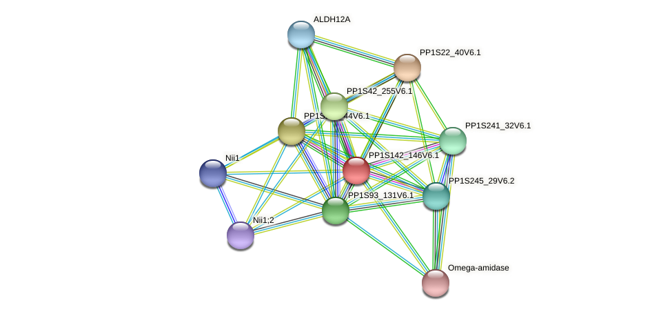 PP1S142_146V6.1 protein (Physcomitrella patens) - STRING interaction network