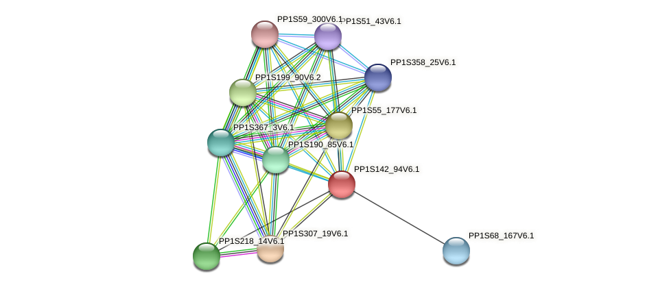 PP1S142_94V6.1 protein (Physcomitrella patens) - STRING interaction network