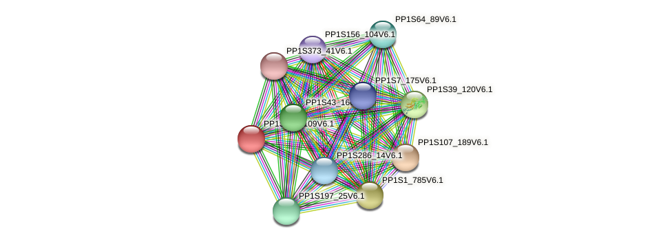 PP1S143_109V6.1 protein (Physcomitrella patens) - STRING interaction network