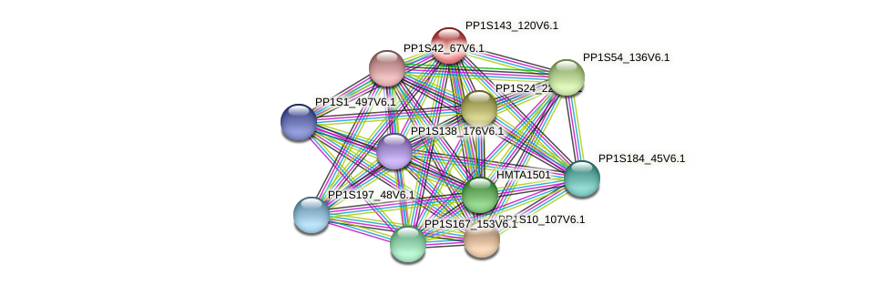 PP1S143_120V6.1 protein (Physcomitrella patens) - STRING interaction network