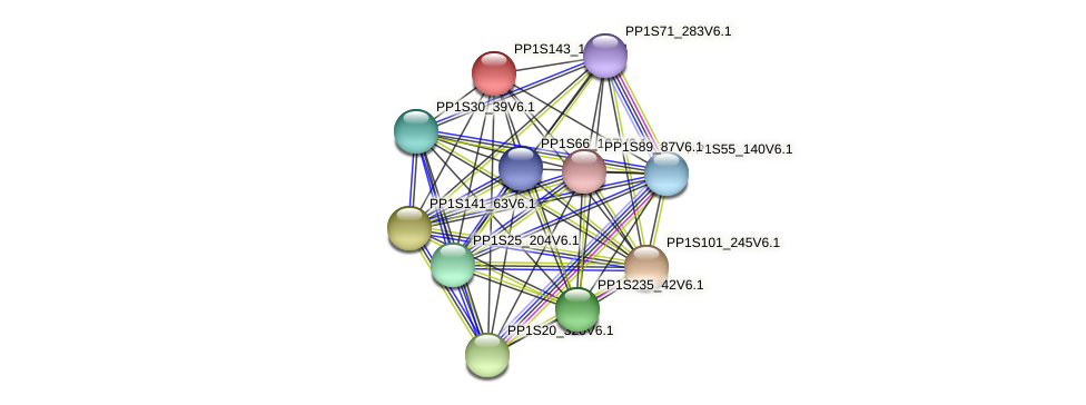 PP1S143_131V6.1 protein (Physcomitrella patens) - STRING interaction network