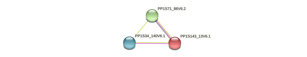 PP1S143_13V6.1 protein (Physcomitrella patens) - STRING interaction network