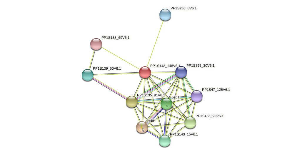 PP1S143_148V6.1 protein (Physcomitrella patens) - STRING interaction network
