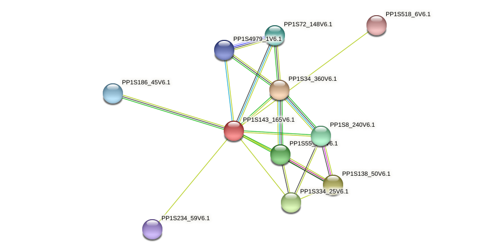PP1S143_165V6.1 protein (Physcomitrella patens) - STRING interaction network
