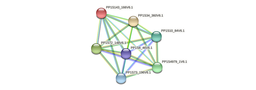 PP1S143_166V6.1 protein (Physcomitrella patens) - STRING interaction network