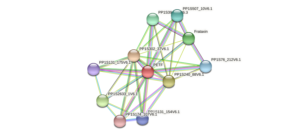 PP1S143_176V6.1 protein (Physcomitrella patens) - STRING interaction network