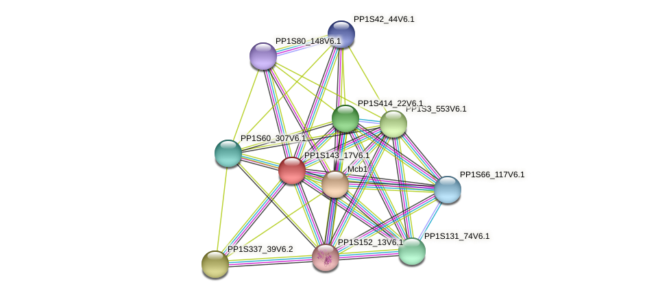 PP1S143_17V6.1 protein (Physcomitrella patens) - STRING interaction network