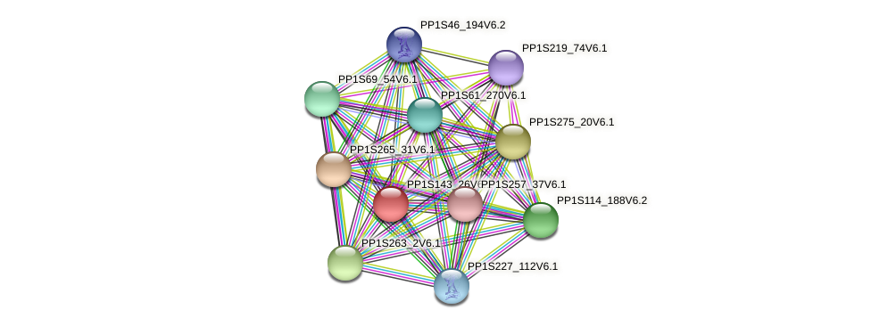 PP1S143_26V6.1 protein (Physcomitrella patens) - STRING interaction network