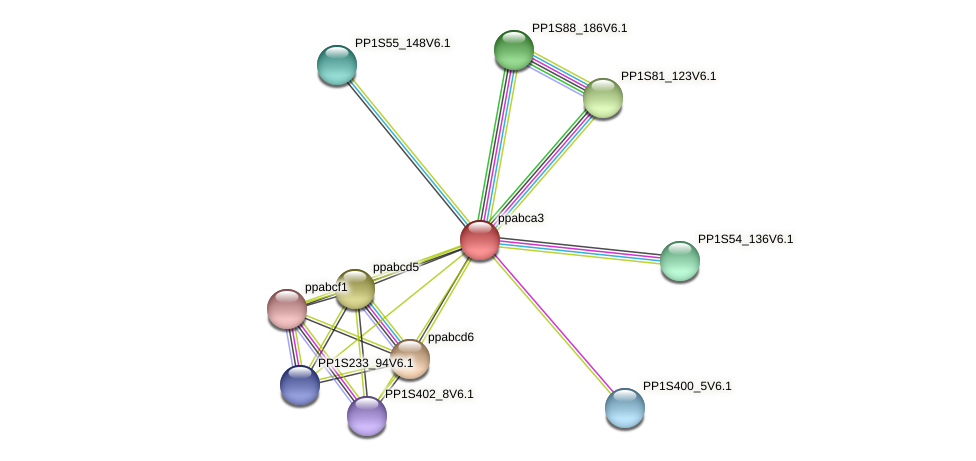 ppabca3 protein (Physcomitrella patens) - STRING interaction network