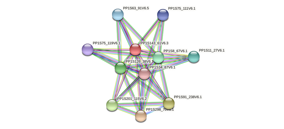 PP1S143_61V6.1 protein (Physcomitrella patens) - STRING interaction network