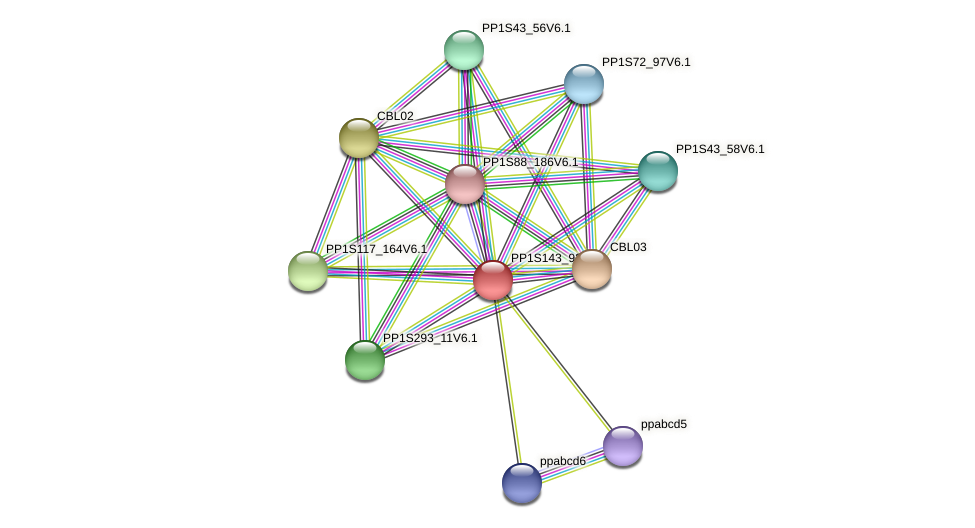 PP1S143_92V6.1 protein (Physcomitrella patens) - STRING interaction network