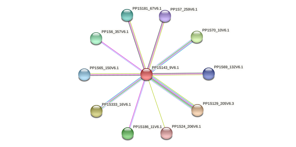 PP1S143_9V6.1 protein (Physcomitrella patens) - STRING interaction network