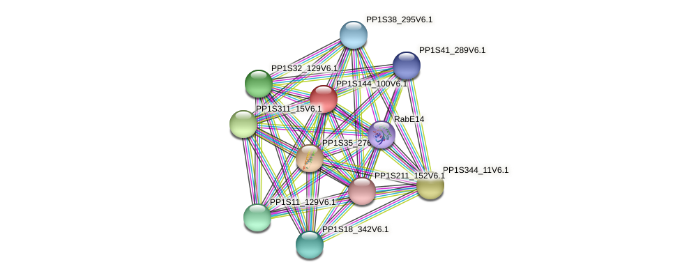 PP1S144_100V6.1 protein (Physcomitrella patens) - STRING interaction network
