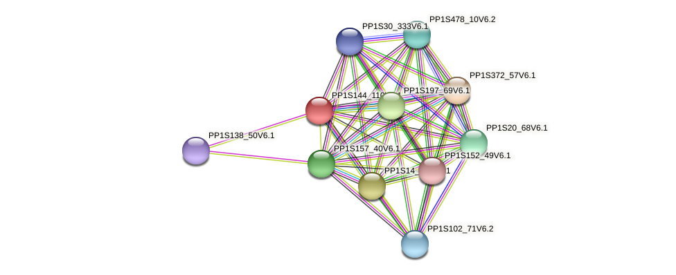 PP1S144_110V6.1 protein (Physcomitrella patens) - STRING interaction network