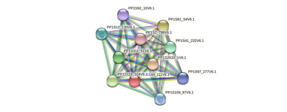 PP1S144_111V6.1 protein (Physcomitrella patens) - STRING interaction network