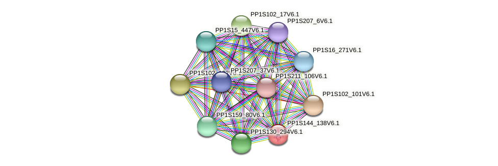 PP1S144_138V6.1 protein (Physcomitrella patens) - STRING interaction network