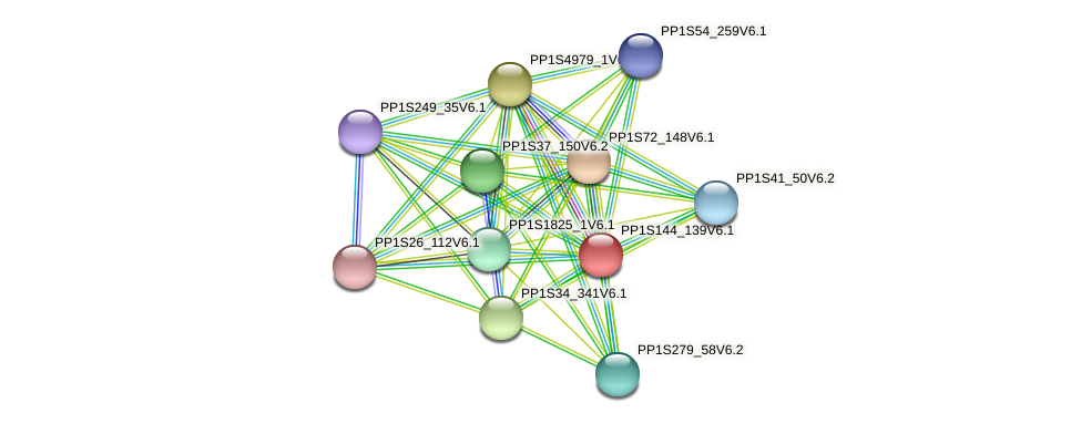PP1S144_139V6.1 protein (Physcomitrella patens) - STRING interaction network
