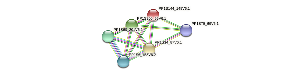 PP1S144_148V6.1 protein (Physcomitrella patens) - STRING interaction network