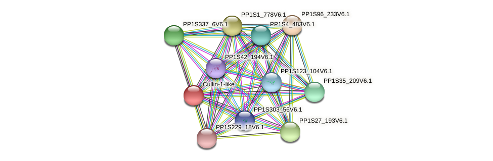 PP1S144_158V6.1 protein (Physcomitrella patens) - STRING interaction network