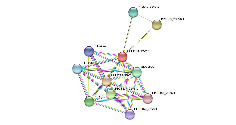 PP1S144_17V6.1 protein (Physcomitrella patens) - STRING interaction network