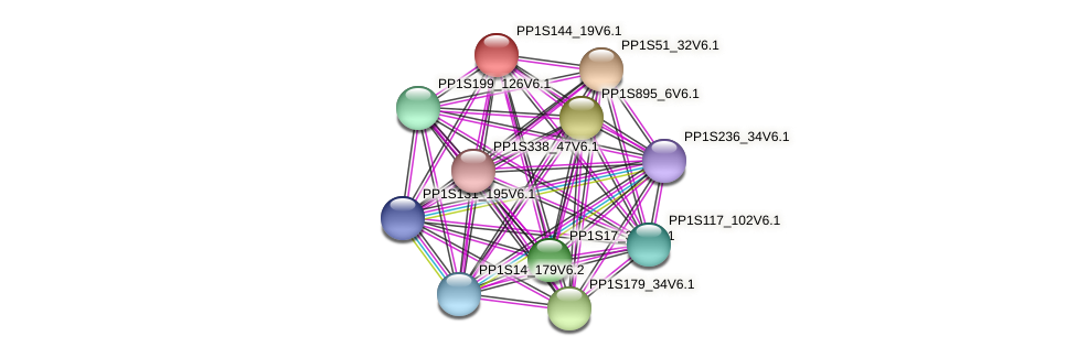 PP1S144_19V6.1 protein (Physcomitrella patens) - STRING interaction network